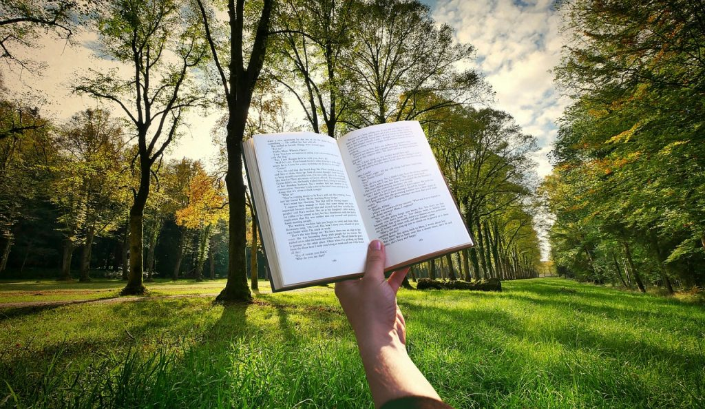 book, hand, reading